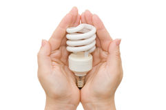 Energy saving light bulb in the palm. Isolated over white Stock Images