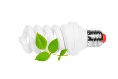 Energy saving light bulb and plant Stock Image