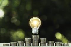 Energy saving light bulb  stacks of coins on nature background. Energy saving light bulb stacks of coins on nature background royalty free stock photo