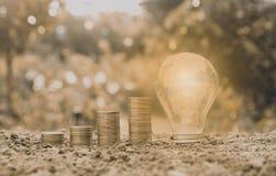 Energy saving light bulb and tree growing on stacks Stock Image