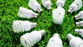 Energy saving light bulbs on green grass. Energy saving light bulbs on grass forming flower. Green energy concept royalty free stock photos