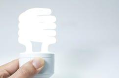 Energy saving light bulbs. To reduce electricity usage Royalty Free Stock Image