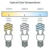 Energy saving light bulbs. Vector. Royalty Free Stock Photo