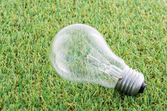 Energy saving light lamp bulb concept Royalty Free Stock Photo
