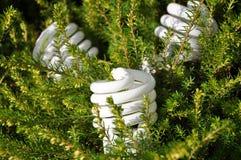 Energy saving lightbulb Royalty Free Stock Photography