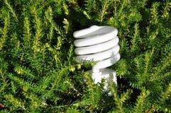 Energy saving lightbulb Stock Images