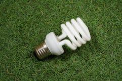 Energy saving omni lamp. On conifer needles background Royalty Free Stock Photo