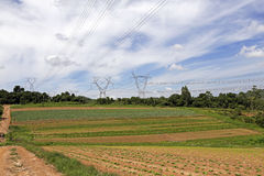 Energy tower in cultivated land Stock Photos
