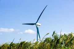 Energy wind turbine rotating fields at sunset Stock Photography