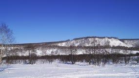 Enero, vigésimo sexto, 2019 - bosque del invierno en la ciudad de Vilyuchinsk, península de Kamchatka, Rusia imagenes de archivo