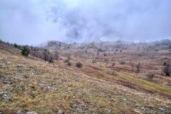 Enevoe nas montanhas, floresta do outono, cor amarela imagens de stock royalty free