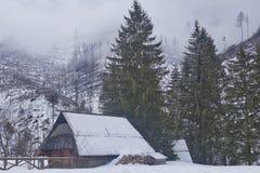 Enevoe nos picos e no vale com abetos vermelhos, uma casa de campo velha da montanha com uma pilha de lenha, foto de stock