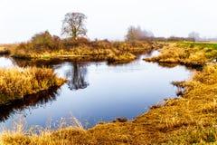 Enevoe a suspensão sobre Pitt River e o pântano de Pitt-Addington em Pitt Polder perto do bordo Ridge no Columbia Britânica, Cana Imagens de Stock