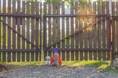 Enfant à la barrière, avec un chien de jouet Photos libres de droits