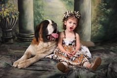 Enfant adorable et son saint Bernard Puppy Dog Photos libres de droits