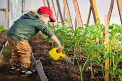 Enfant arrosant le jardin Image libre de droits