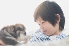 Enfant asiatique mignon jouant avec le chiot de chien de traîneau sibérien Photos stock