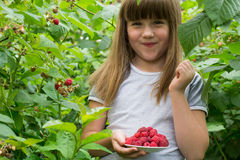 Enfant avec des framboises Image libre de droits
