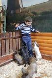Enfant avec des lapins Photos libres de droits