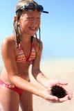 Enfant avec l'oursin Photo stock