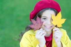 Enfant avec la promenade de feuilles d'érable d'automne L'agrément d'automne est juste autour Petite fille excitée au sujet de la photo libre de droits
