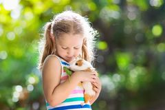 Enfant avec le cobaye Animal de Cavy Enfants et animaux familiers images libres de droits