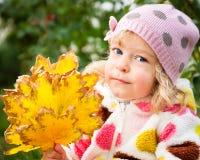 Enfant avec le groupe de lames d'automne Image stock