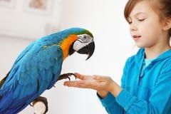 Enfant avec le perroquet d'ara Photo libre de droits