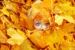 Enfant dans des lames d'automne. Visage dans des lames d'érable. Photo libre de droits