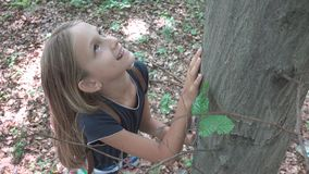 Enfant dans la forêt, enfant jouant en nature, fille dans l'aventure extérieure derrière un arbre images libres de droits