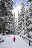 Enfant dans le manteau rose marchant dans la neige parmi des pins dans le winte Image stock