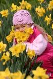Enfant dans les jonquilles jaunes Photo stock
