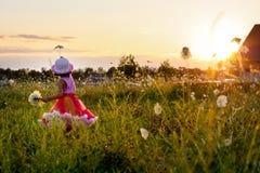 Enfant dans un domaine de fleur Photographie stock
