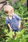 Enfant dans un jardin Photo libre de droits