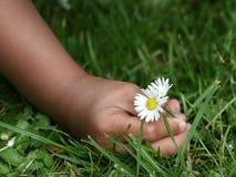 Enfant de fleur photographie stock libre de droits