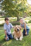 Enfant de mêmes parents avec leur chien en parc Photos stock
