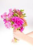 Enfant donnant des fleurs Image stock