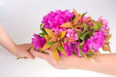 Enfant donnant la fleur Image libre de droits