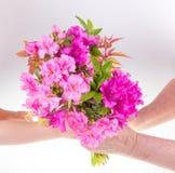 Enfant donnant la fleur Images stock
