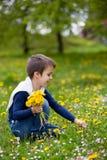 Enfant doux, garçon, recueillant des pissenlits et des fleurs de marguerite Images libres de droits