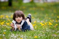 Enfant doux, garçon, recueillant des pissenlits et des fleurs de marguerite Image stock