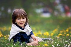 Enfant doux, garçon, recueillant des pissenlits et des fleurs de marguerite Photographie stock