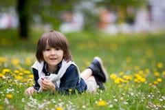 Enfant doux, garçon, recueillant des pissenlits et des fleurs de marguerite Photos libres de droits