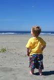 Enfant en bas âge à la plage Photo libre de droits