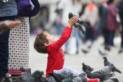 Enfant en bas âge étreignant un pigeon Photo libre de droits
