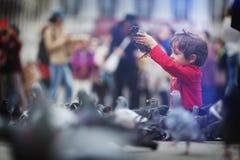 Enfant en bas âge alimentant les pigeons Photographie stock libre de droits