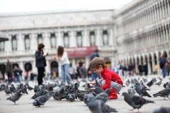 Enfant en bas âge alimentant les pigeons Photo libre de droits