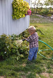 Enfant en bas âge arrosant le jardin Image libre de droits