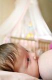 enfant en bas âge de allaitement de chéri Photo libre de droits