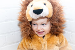 Enfant en bas âge en Lion Costume Photo stock